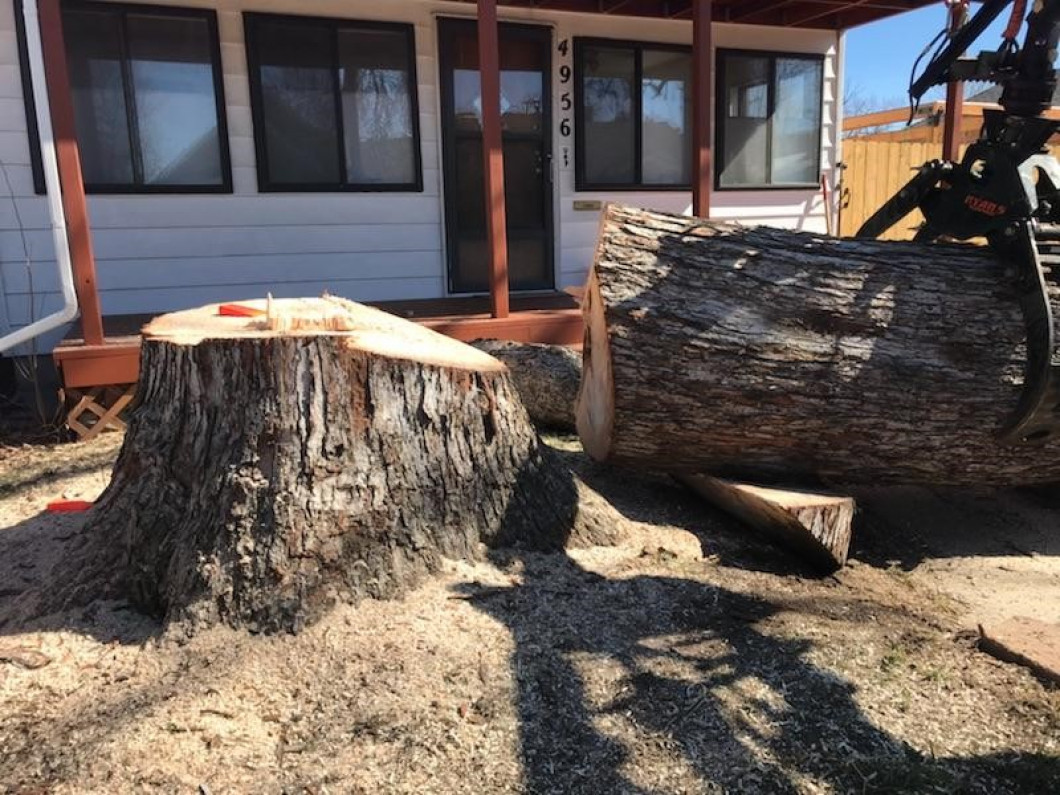 Simplify the stump removal process
